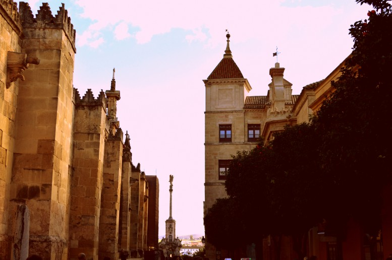 While walking around the Alcazar's palace
