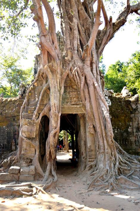 Cambodia_114